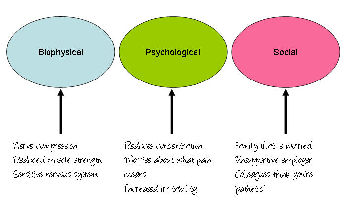 biopsychosocial model in clinical physiotherapy In this article, havelka et al point out that the biomedical model was a valid model while infectious diseases caused by one factor prevailed and were the main healthcare problem for humanity, but now that chronic, lifestyle & non-infectious diseases with multiple influencing factors are the main health issue it is no longer effective or appropriate as the default model for healthcare.